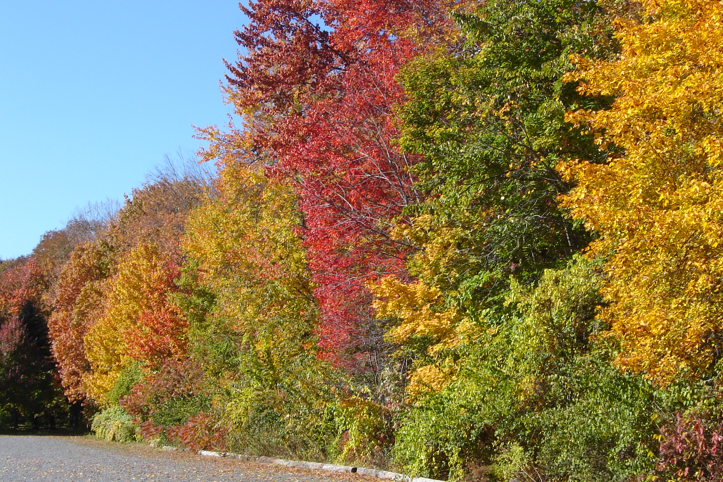 Vermont last weekend.